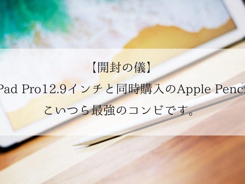 最強のApple Pencil開封!と電池残量確認方法!iPad Pro12.9インチ