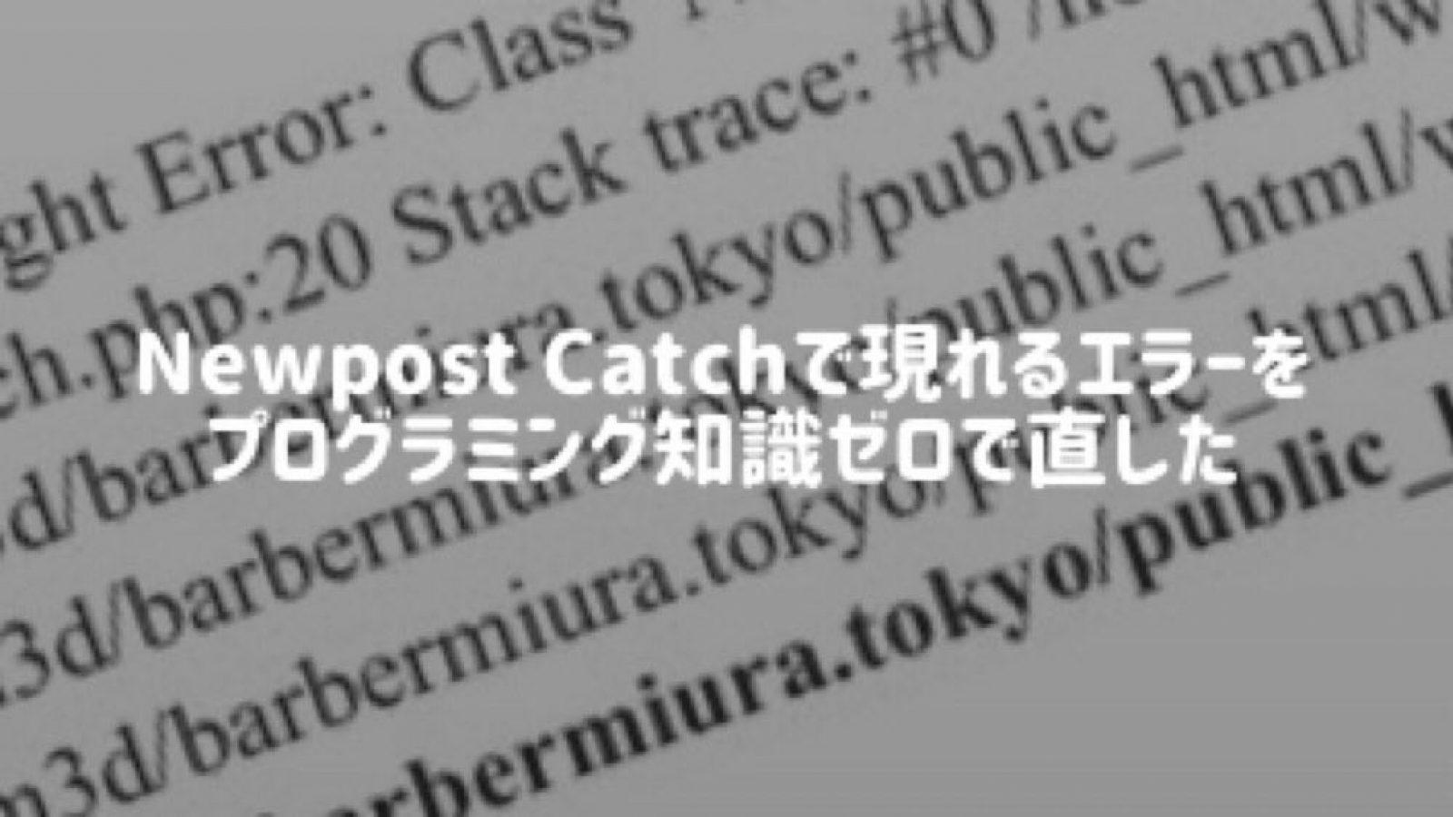 【WordPress プラグイン】Newpist Catchを固定ページで使う際に出るエラーの対処方法【知識ない人向け】